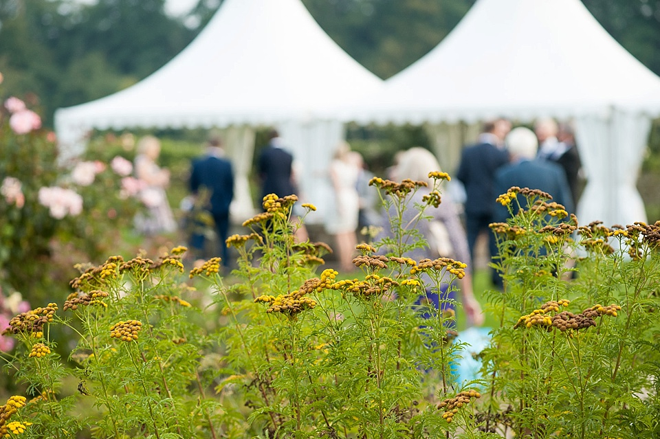 Pretty yellow flowers in English country garden wedding at the Walled Garden at Cowdray - Sussex wedding photographer © Fiona Kelly photography
