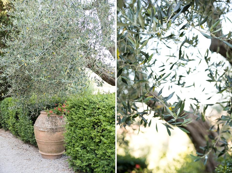 Tuscany nature photography