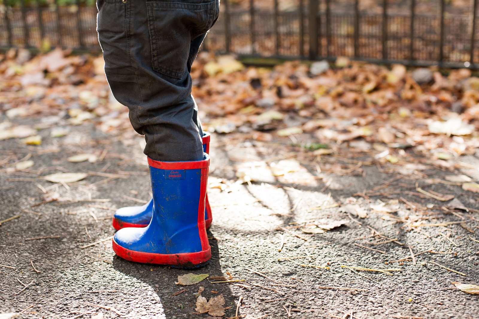 Small blue boots natural family photography