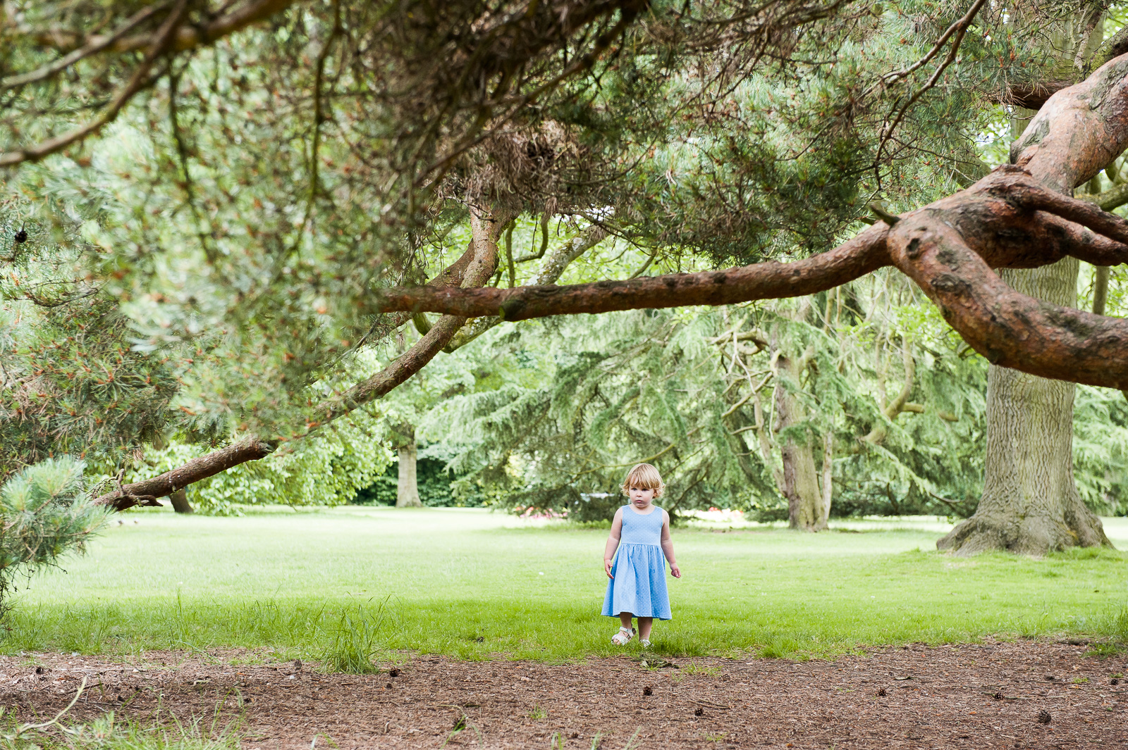 Cute girl playing in woods natural family photography