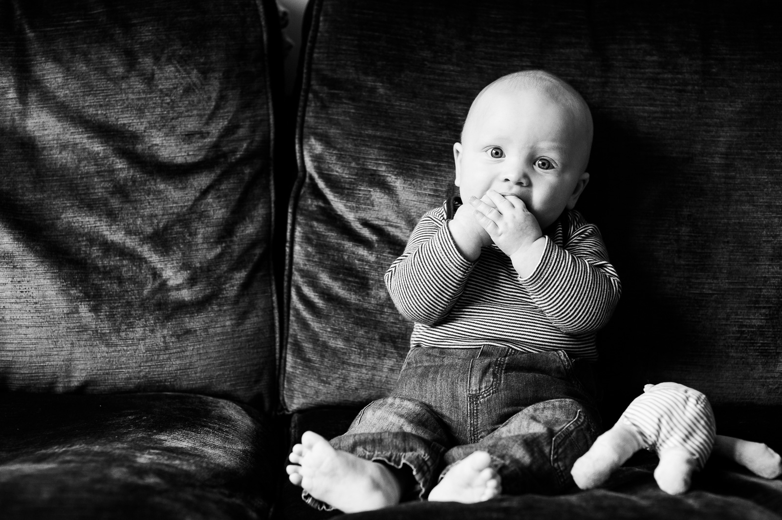 Cute baby on sofa family photography