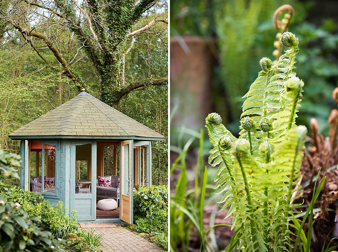 Tranquil garden shed with fern